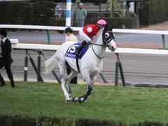 20151227 中山10R 有馬記念(G1) ゴールドシップ 16