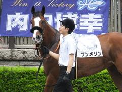 20170625 東京1R 3歳牝馬未勝利 プンメリン 07