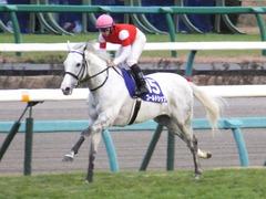 20151227 中山10R 有馬記念(G1) ゴールドシップ 19