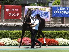 20150628 東京6R 3歳未勝利 コスモポッポ 08