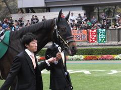 20151123 東京11R 東スポ杯2歳S(G2) プロディガルサン 02
