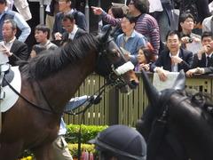 20160423 東京5R 3歳未勝利 アークアーセナル 12