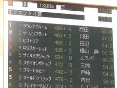 20181125 東京8R オリエンタル賞(1000) ロジスカーレット 01