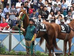 20150927 中山9R 芙蓉ステークス プランスシャルマン 12