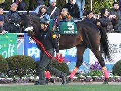 20140119 中山競馬場 ショウナンラグーン 03