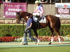 東京12R (1000) メイショウノボサン 14