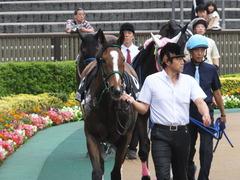 20161008 東京9R 山中湖特別(牝1000) ツクバアスナロ 02