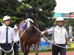 20140915 大井11R 東京記念 ユーロビート 05