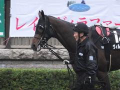 20151123 東京9R 伊勢佐木特別 ヴィルトグラーフ 04