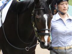 20160514 東京5R 3歳牝馬未勝利 ツボミ 09