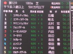 20161210 中山12R (500) ヤマニンリュウセイ 01