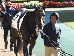 20151129 東京2R 2歳未勝利 ラルゴランド 02