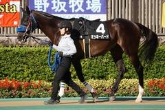 20191102 東京9R 南武特別(2勝クラス) ミッキーバード 06