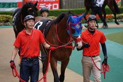 20191124 東京10R ウェルカムS (3勝) アドマイヤスコール 03