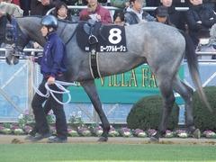 20190113 中山9R 黒竹賞(500) ロークアルルージュ 08