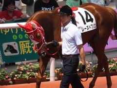 20160618 阪神8R 3歳上牝馬500万下 レーヌドブリエ 14