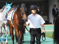 20141026 東京1R トーセンカナロア 03