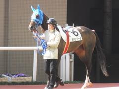 20170225 阪神4R 3歳未勝利 サテンドール 03