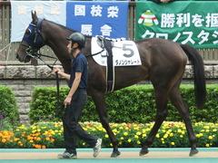 20180617 東京3R 3歳未勝利 ダノンシャレード 02
