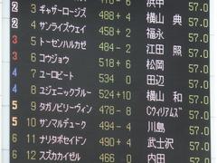 20140525 東京12R 丹沢S ユーロビート 01