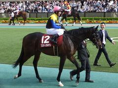 20160430 東京11R 青葉賞(G2) プロディガルサン 15