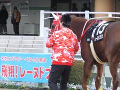 20170114 京都10R 北大路特別 4歳上牝馬1000万下 レーヌドブリエ 03