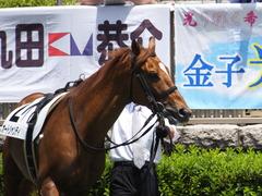 20160604 東京3R 3歳未勝利 オートシャンティ 11