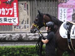 20161022 東京12R (1000) ノーモアゲーム 04
