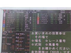 20170225 阪神4R 3歳未勝利 サテンドール 02