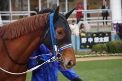 20200118 中山9R 菜の花賞 3歳牝馬1勝クラス シホノレジーナ 04