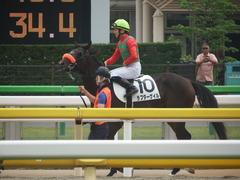 20190601 東京7R 3歳牝馬1勝 ラプターゲイル 12