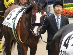 20161030 東京1R 2歳未勝利 プンメリン 05