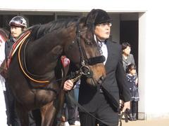20170325 中山11R 日経賞(G2) マイネルサージュ 03