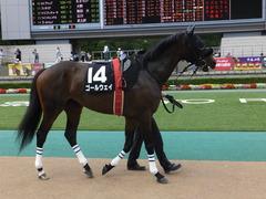 20140629 東京10R ゴールウェイ 04