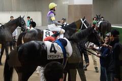 20191110 東京2R 2歳牝馬未勝利 ミヤコシャンティ 20