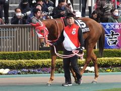 20170211 東京9R テレビ山梨杯(牝1000) レーヌドブリエ 06