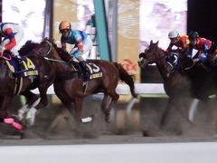 20181205 大井11R 勝島王冠(S2) ユーロビート 19