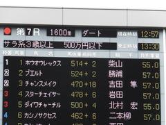 20161009 東京7R (500) プエルト 01