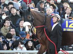 20151229 大井10R 東京大賞典 (G1) ユーロビート 07