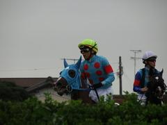 20180922 中山2R 2歳牝馬未勝利 ヴァルドワーズ 16