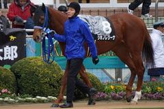 20200118 中山9R 菜の花賞 3歳牝馬1勝クラス シホノレジーナ 10