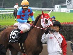 20151123 東京10R 鷹巣山特別 レーヌドブリエ 24