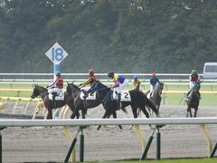 20141026 東京4R サウンドアラムシャ 14