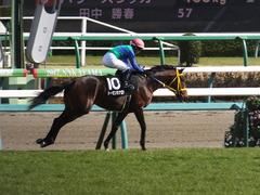 20170226 中山9R 富里特別4上(500) トーセンカナロア 20