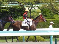 20170910 阪神3R 3歳未勝利 フェアチャイルド 34