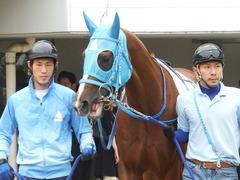 20180922 中山2R 2歳牝馬未勝利 ヴァルドワーズ 08