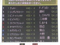 20160131 東京1R 3歳未勝利 ホウオウマリリン 00