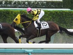 20160925 中山6R (500) ノーブルクリスタル 14