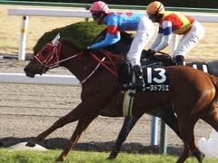 20170114 京都10R 北大路特別 4歳上牝馬1000万下 レーヌドブリエ 19
