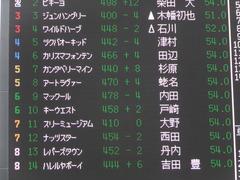 20150919 中山3R 2歳未勝利 アートラヴァー 01